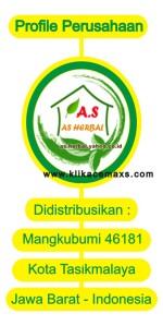 profile-ace-maxs